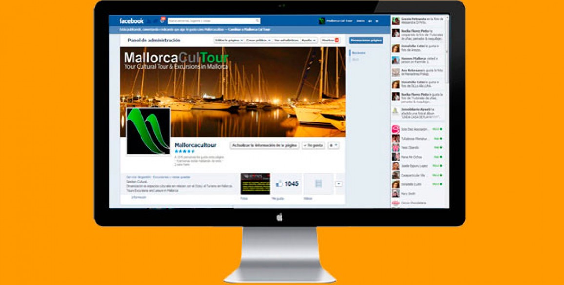 Social Media Marketing, e-Mail Marketing: Marketing Online (Mallorca)