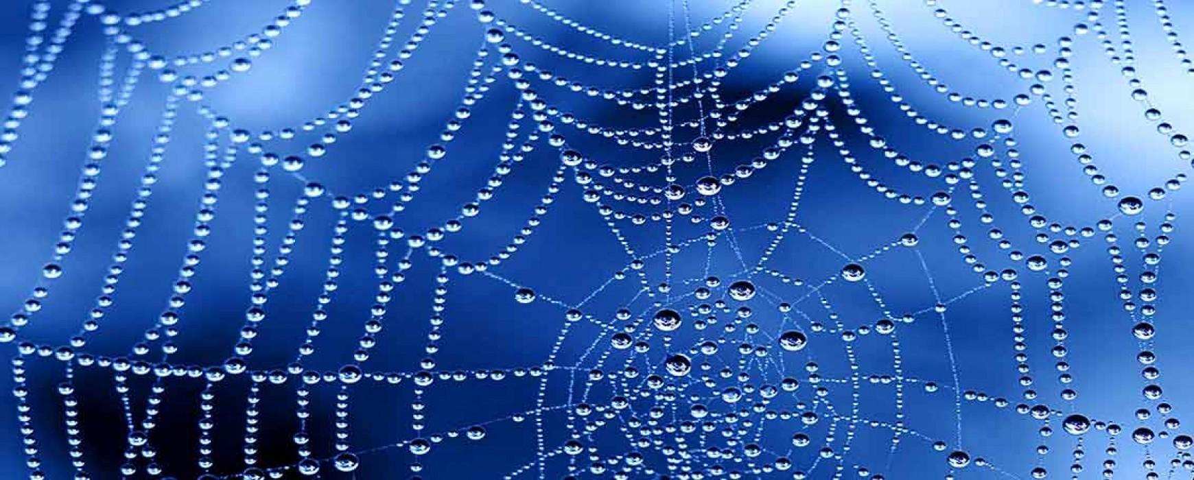 Diseño de Páginas Web: ¿A quién contratar el Diseño de mi Web?